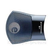 Инструментальный микрофон SENNHEISER E 901 фото