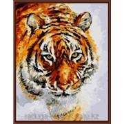 Картина по номерам Л.Афремов - Тигр на снегу фото