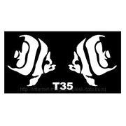 Трафарет для временных тату размер 16*9см(Т35) фото