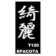 Трафарет для временных тату размер 16*9см(Т120) фото
