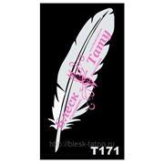 Трафарет для временных тату размер 16*9см(Т171) фото