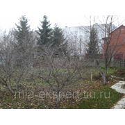 Земельный участок 12 га на юге Подмосковья дёшево чернозём фото