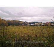Земельный участок у леса д. Харланиха-2 Волоколамский район фото
