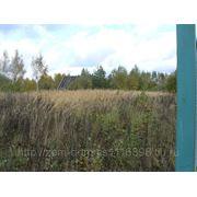 Продается земельный участок 15.3 соток в д. Остров, лес, река фото