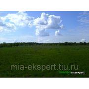 Земельный участок 24 га для ведения кфх на юге подмосковья фото