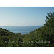 Земельный участок в Геленджике, Криница - 2 га. фото