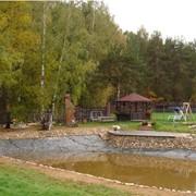 Ландшафтный дизйн сада фото