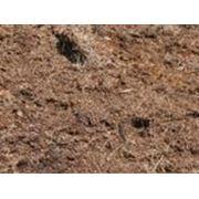 Навоз органические удобрения удобрения удобрения органические. фото