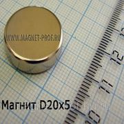 Неодимовый магнит 20х5мм. фото