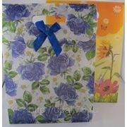 Пакет подарочный 26х19см | пакеты подарочные пластиковые | подарочная упаковка |