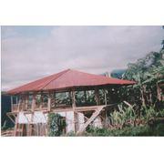 Веранда из бамбука фото
