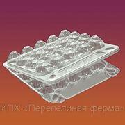 Продам упаковку для перепелиных яиц. фото