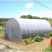 Теплица под сотовый поликарбонат «Тепличка — 2пк-8м» (каркас) фото