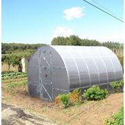 Теплица под сотовый поликарбонат «Тепличка — 2пк-4м» (каркас) фото