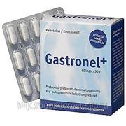 GASTRONEL + 60 капс фото