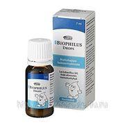 Biophilus DRIP DROPS 7 мл. фото