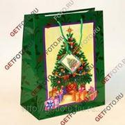 Пакет подарочный Новогодний 26х32х12 см GF 1310 фото