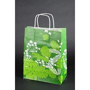 Крафт пакет с рисунком цветы фото