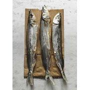 Пакеты для рыбы фото