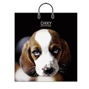Пакеты с пластиковой ручкой,ламинированный пакет, купить подарочные пакеты,купить пакеты оптом фото