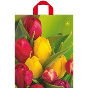 Пакет с петлевой ручкой (36х43) Тюльпаны ТИКО 10/50 фото