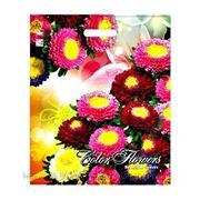 """Пакет ПВД с вырубной ручкой рейтер """"Разноцветные цветы"""""""
