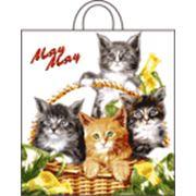 """Пакет """"Кошки в лукошке"""" с петлевой ручкой фото"""
