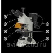 Микроскоп Биомед-5ПР ЛЮМ фото