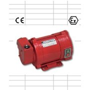 Электро лопастной насос EP130 EEX-D для бензина фото