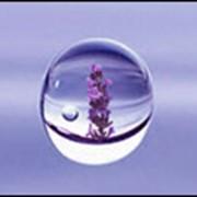 Гидролаты (душистые воды) фото
