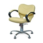 Парикмахерское кресло Бетти III фото