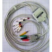 Кабель для электрокардиографа ЭК3Т-12-03 Альтон
