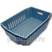 Ящик пластиковый ягодный. Размеры 596х405х180 мм. фото
