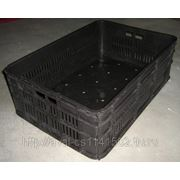 Ящик колбасный универсальный-№3 (597*398*180мм), . фото