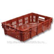 Ящик пластиковый для заморозки мяса, птицы фото