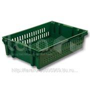Ящик пластиковый хлебный (евролоток) фото