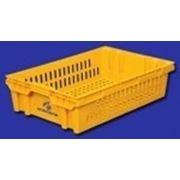 Ящик хлебный (евролоток) 30403