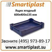 Ящик пластиковый артикул 120 ящик ягодный для заморозки 600х400х135 мм
