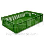 Ящик для перевозки суточных цыплят фото