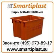 Ящик пластиковый артикул 606 Ящик универсальный дно сплошное, стенки перфо