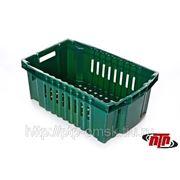 Ящик пластиковый овощной Б фото