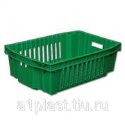 Ящик пластиковый для овощей морозостойкий фото