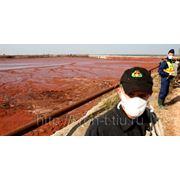 Бизнес – проект: «Переработка красного шлама».
