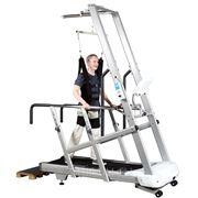 Тренажер обучения ходьбе - ALEXANDAVE HC-TM-C9000-2700 фото
