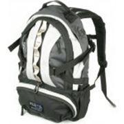 Рюкзак Polar П1003-05 фото