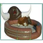 Батут с быком фото