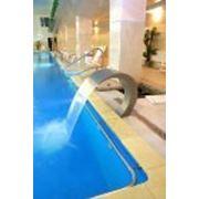 Водопад для бассейна Кобра фото