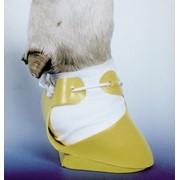 Башмак для коров пластмассовый фото
