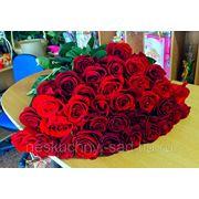 """Букет из 35 красных роз - премиум """"...Пусть он увидит уезжая, гирлянды огненных цветов!"""" фото"""