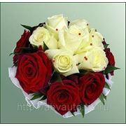 фото предложения ID 7343387